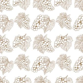 Wzór z ręcznie rysowane winogron. element plakatu, karty, banera, ulotki. ilustracja