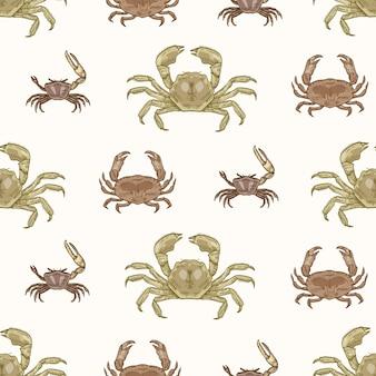 Wzór z różnych rodzajów krabów na białym tle. naturalne tło ze zwierzętami wodnymi. elegancka, realistyczna ilustracja wektorowa w stylu vintage do pakowania papieru, nadruk na tkaninach.