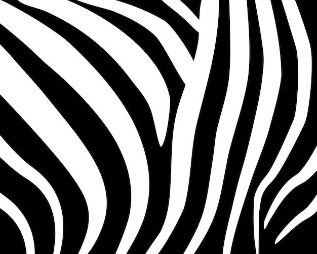 Wzór zebry. abstrakcyjny wzór geometryczny. czarno-białe tło skóry zwierząt. modna stylowa tapeta wektor.