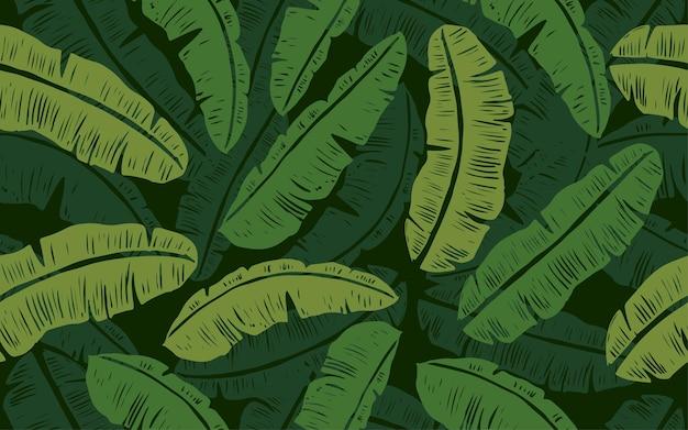 Wzór zielonych liści bananowca