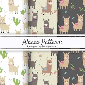 Wzory alpaki