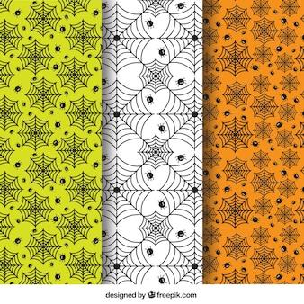 Wzory pajęczej sieci