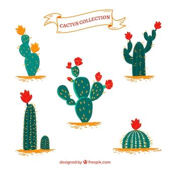 Zabawa kaktus z kolorowymi kwiatami