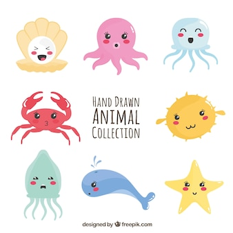 Zabawna kolekcja zwierząt morskich