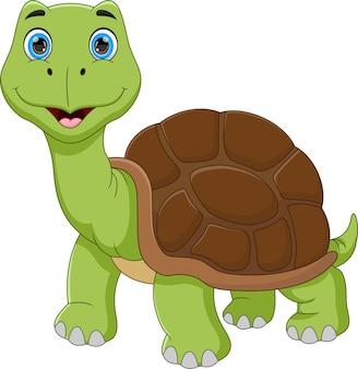 Zabawna kreskówka żółw na białym tle