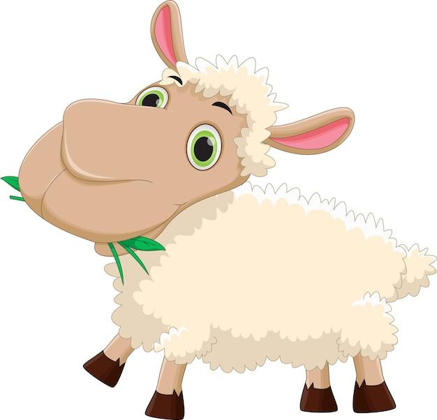 Zabawne kreskówki owiec jedzenia trawy