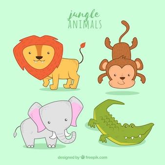 Zabawne opakowanie zwierząt dżungli