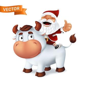 Zabawny, srebrny wół symbol roku w chińskim kalendarzu zodiaku z mikołajem na plecach. kreskówka uśmiechniętego byka i śmiejącego się charakteru na białym tle