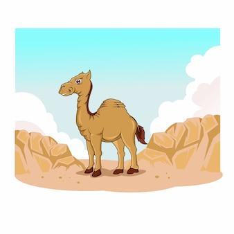Zabawny wielbłąd na pustyni
