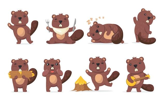 Zabawny zestaw bobra