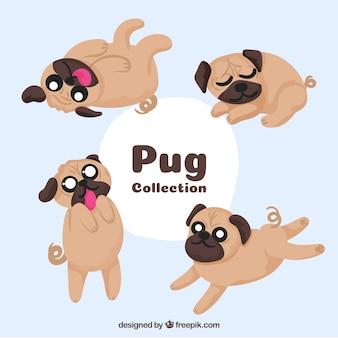 Zabawny zestaw cute pugs