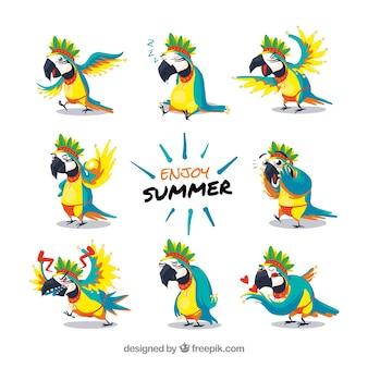Zabawny zestaw znaków papugi
