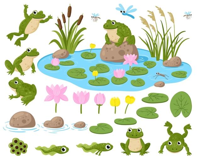 Żaby kreskówka. śliczne maskotki płazów, żaba ikra, kijanki, zielone żaby, lilie wodne, letni staw i owady wektor zestaw ilustracji. siedlisko przyrody żaby. kijanka urocza, mała żaba i ropucha