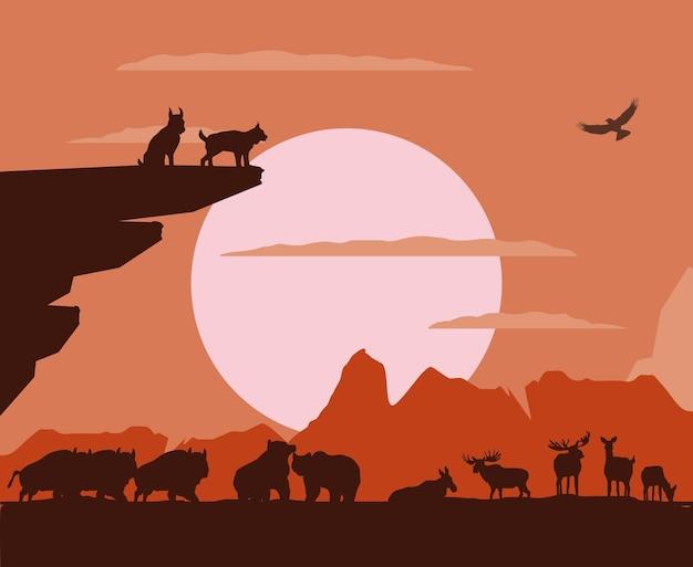 Zachód słońca góry zwierzęta krajobraz sylwetka