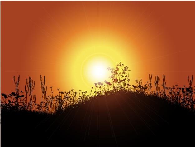 Zachód słońca w tle