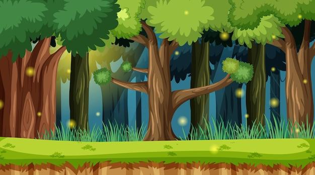 Zaczarowany krajobraz leśny w tle