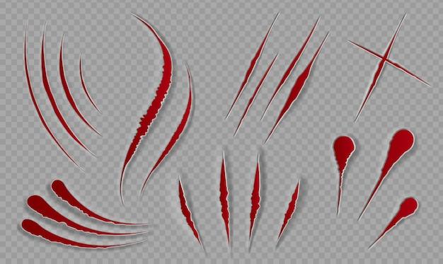 Zadrapania i skaleczenia krwią. krwawe blizny i ostre nacięcia. rany rozerwane łapami zwierząt. straszny wystrój na halloween. pazury kota śledzi wektor zestaw. ilustracja ukośnika i krawędź śladu
