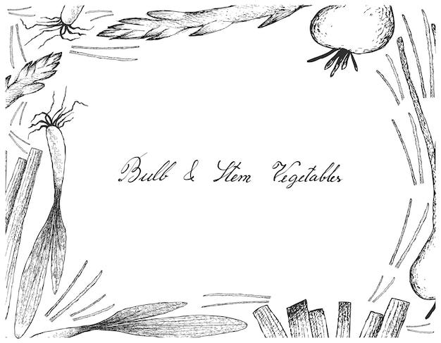 Żarówki i łodygi warzywa ramki na białym tle