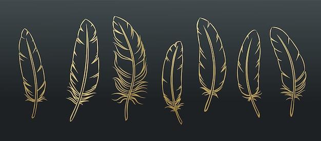 Zarys zestaw piór. złote pióro ptaka na czarnym tle.