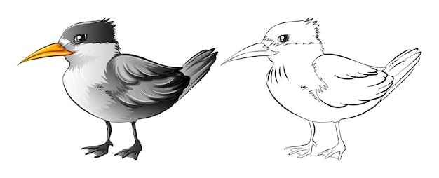 Zarys zwierząt dla dzikiego ptaka