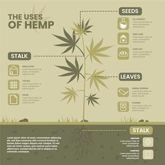 Zastosowania konopi - infografika