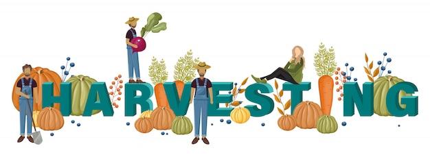 Zbierać szablon tekstowy z rolnikami i ludźmi