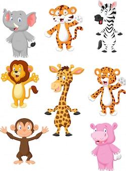 Zbiór 8 afrykańskich zwierząt.