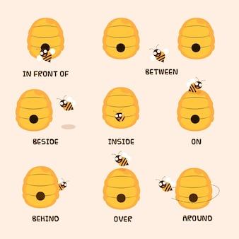 Zbiór angielskich przyimków z uroczą pszczołą