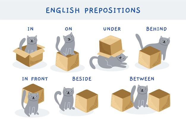 Zbiór angielskich przyimków z uroczym kotem