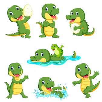 Zbiór cute cartoon aligator postaci