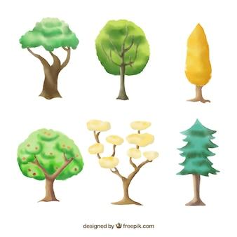 Zbiór drzew
