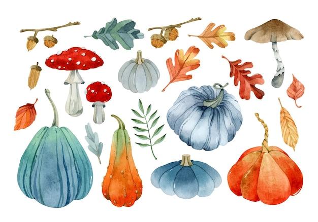 Zbiór dyni i jesienne liście zestaw elementów akwarelowych żołędzi