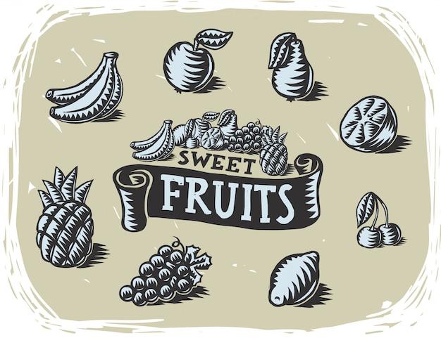Zbiór ilustracji owoców