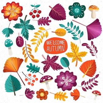 Zbiór liści jesienią