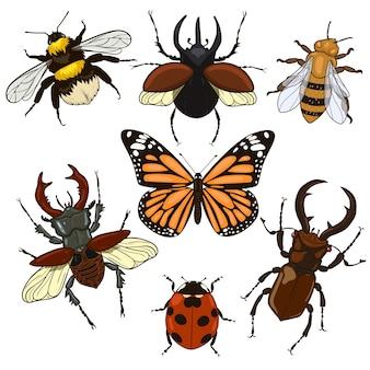 Zbiór owadów na białym tle na białym tle. grafika.