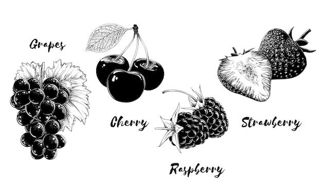 Zbiór owoców i jagód, na białym tle. ręcznie rysowane elementy, takie jak winogrono, wiśnia, truskawka i malina. ilustracji wektorowych