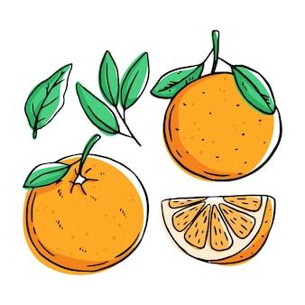 Zbiór owoców pomarańczy na białym tle