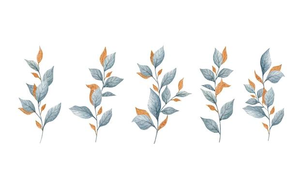 Zbiór pięknych zielonych i złotych liści na białym tle