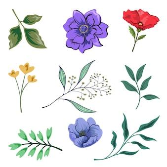 Zbiór pięknych ziół i dzikich kwiatów i liści na białym tle.