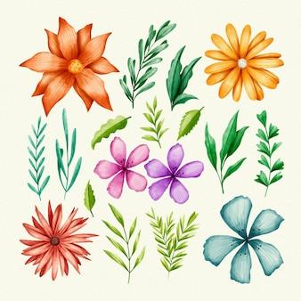 Zbiór pojedynczych kwiatów i liści