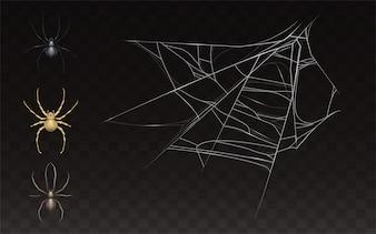 Zbiór realistycznej pajęczyny i pająka. Sieć z insektem odizolowywającym na ciemnym tle.