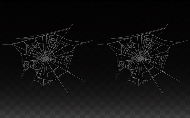 Zbiór realistycznych pajęczyna, pajęczyna na białym tle na ciemnym tle.