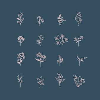 Zbiór ręcznie rysowane elementy botaniczny wektor
