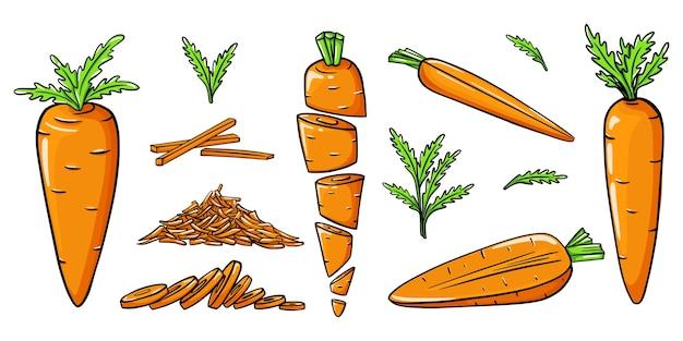 Zbiór ręcznie rysowane marchewki. kolorowa ilustracja z konturem.