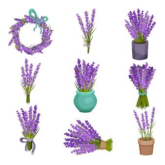 Zbiór różnych bukietów kwiatów. ilustracja
