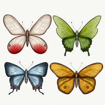 Zbiór różnych motyli akwarela