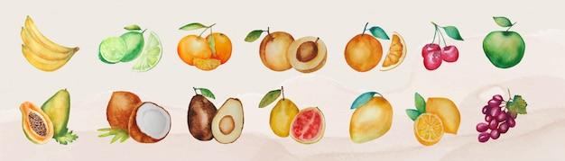Zbiór różnych na białym tle owoców akwarela