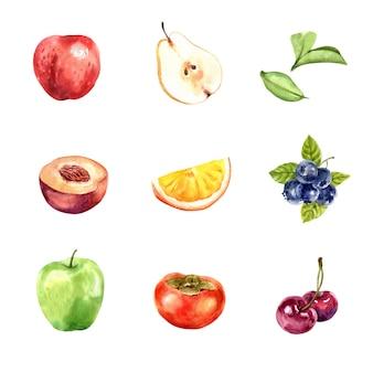 Zbiór różnych owoców na białym tle, akwarela i ręcznie rysowane