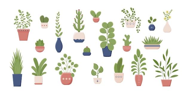 Zbiór różnych roślin w ceramicznym pojemniku kolorowa zieleń z liśćmi do uprawy w domu