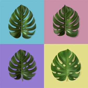 Zbiór różnych zielonych liści monstera na kolorowym tle. ilustracja. realistyczny tropikalny liść. szablon botaniczny do wnętrz, wystroju domu, banera, reklamy, tapety, karty.